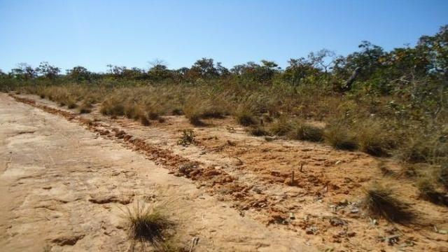 Fazenda no Alto Garças - Foto 5