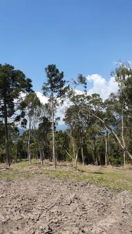 Sitio em Urubici /chácara em Urubici /sitio próximo a Rio Rufino - Foto 10