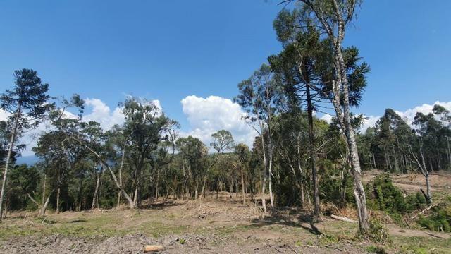 Sitio em Urubici /chácara em Urubici /sitio próximo a Rio Rufino - Foto 6