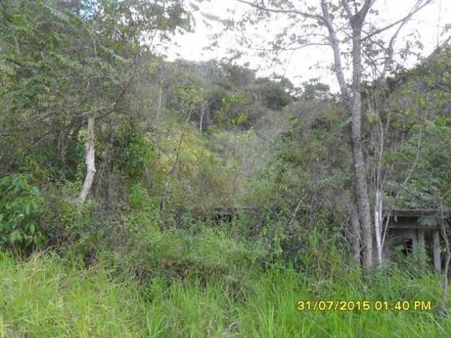 1683/Terreno de 3,19 ha com linda cachoeira e ótima localização - Foto 4
