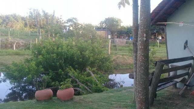 Lindo sitio Imaruí figueira grande - Foto 16