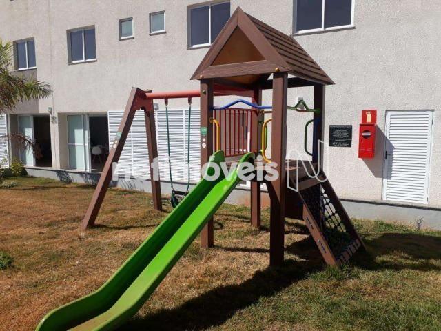 Apartamento à venda com 2 dormitórios em Urca, Belo horizonte cod:760219 - Foto 7