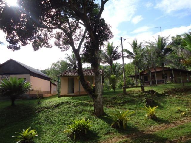 Fazenda Ilhéus Bahia/ Sul da Bahia - Foto 7
