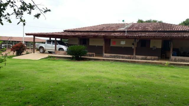 Fazenda com 160 aqls em Formoso do Araguaia - TO c/ confinamento e ótima infra!!