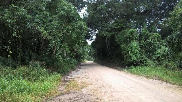 Ótimo terreno de esquina no Baln. Palmeiras e um terreno de 1/2 de quadra no Brandalize
