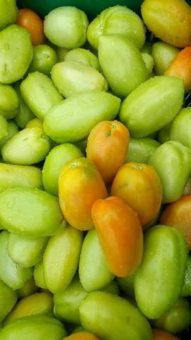 Tomate Saladete