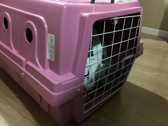 Caixa transporte para pet - Foto 4