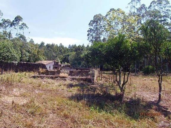 Chácara c/5,1 ha, Bom Jardim - Montenegro - 36 - Foto 4