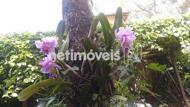 Casa à venda com 2 dormitórios em Braúnas, Belo horizonte cod:789152 - Foto 10