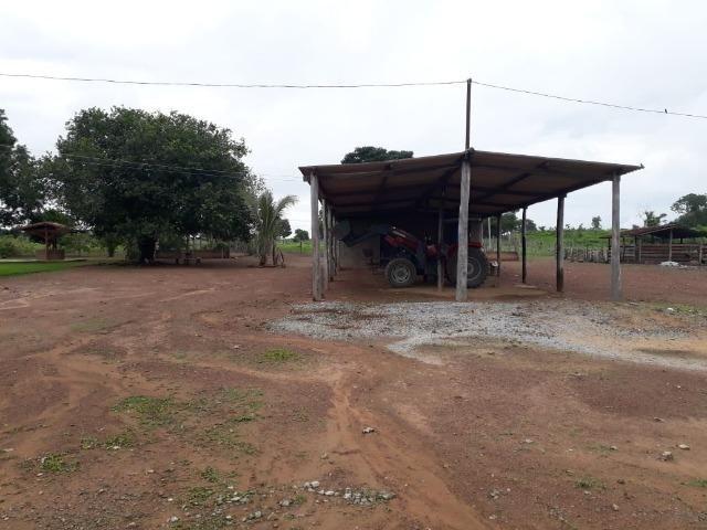 Fazenda com 160 aqls em Formoso do Araguaia - TO c/ confinamento e ótima infra!! - Foto 13
