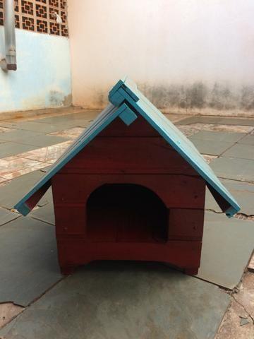 Cozinha de cachorro