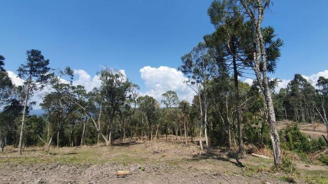 Sitio em Urubici / chácara em Urubici /próximo a Rio Rufino - Foto 3