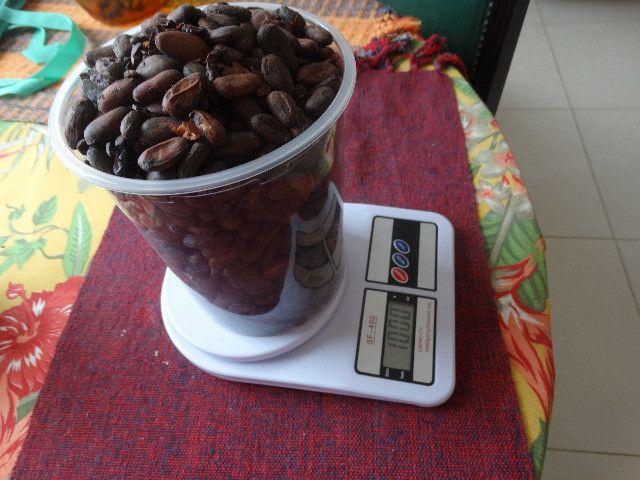 Amendoas de cacau torradas 1kg Ibiracau - Foto 2