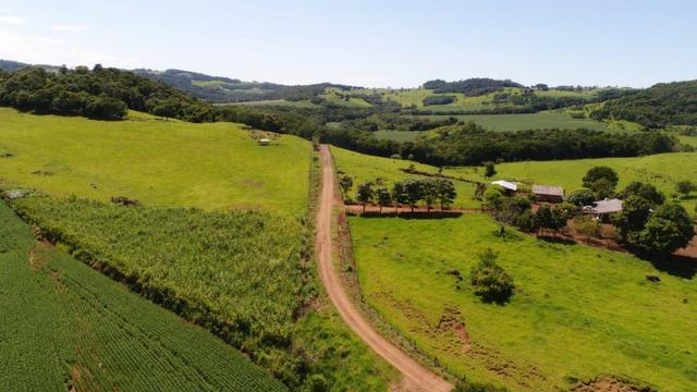 Área rural localizado na cidade de Lindoeste-PR - Foto 10
