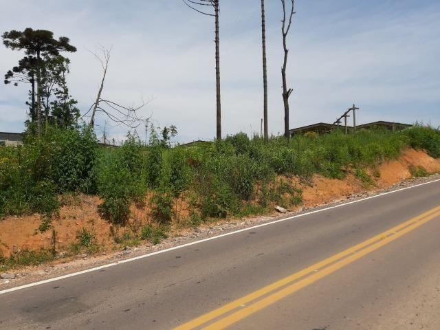 Área Localizada a apenas 120 metros da Rodovia do Xisto/Araucária - Foto 5