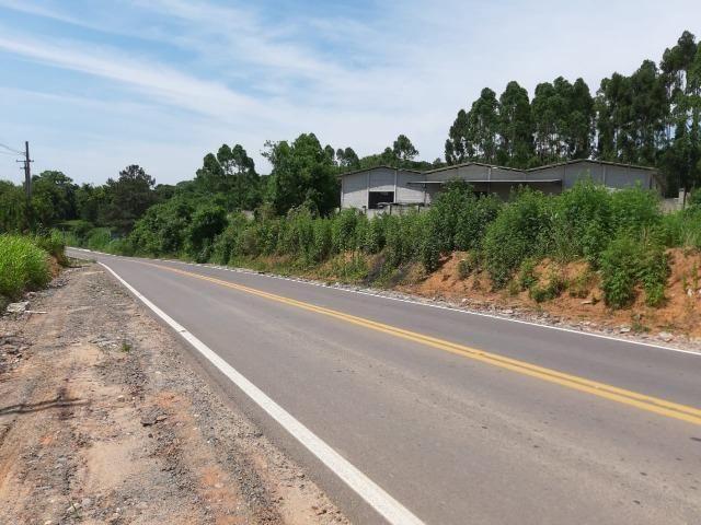 Área Localizada a apenas 120 metros da Rodovia do Xisto/Araucária - Foto 2