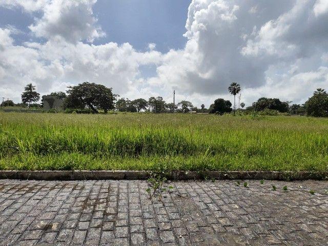 Para investir ou morar Reserva Camará<< - Foto 5