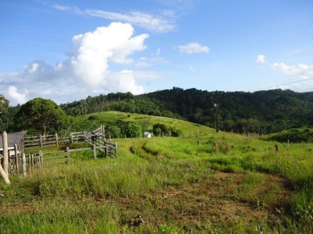 Fazenda Ilhéus Bahia/ Sul da Bahia - Foto 14