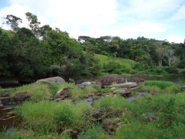 Fazenda Ilhéus Bahia/ Sul da Bahia - Foto 18