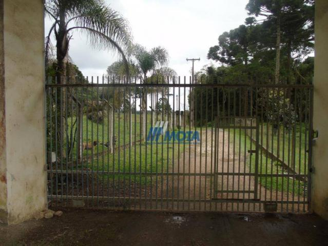 Chácara condomínio fechado são josé dos pinhais - Foto 2