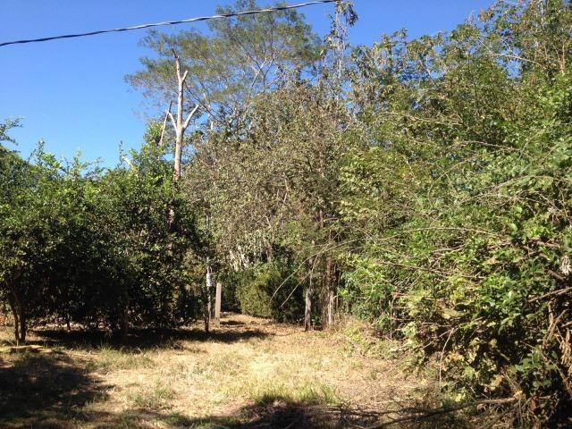 Pesqueiro região de Santo Antonio Do leverger - Foto 20