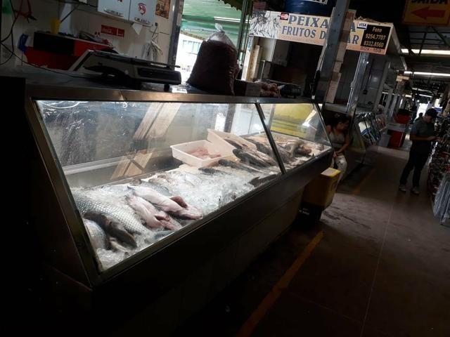 Banca de pescados centro de ceilandia urgente!!!