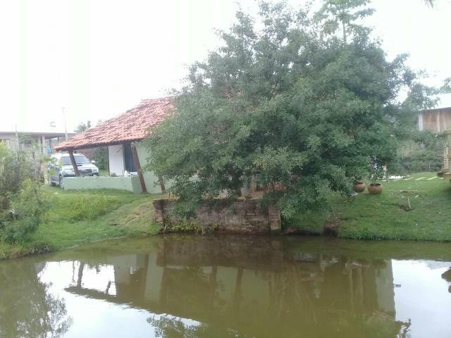 Lindo sitio Imaruí figueira grande - Foto 8