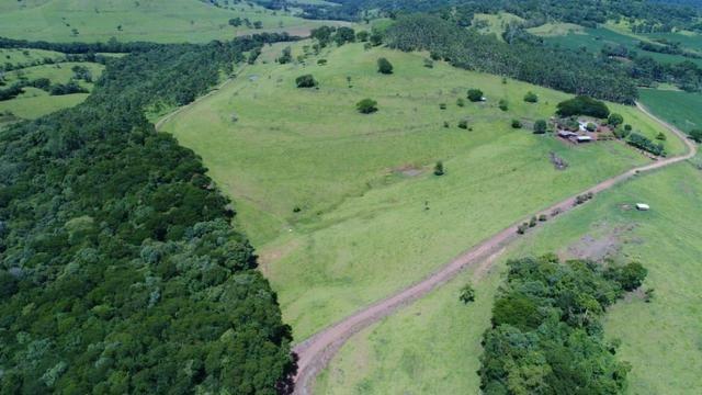 Área rural localizado na cidade de Lindoeste-PR - Foto 18