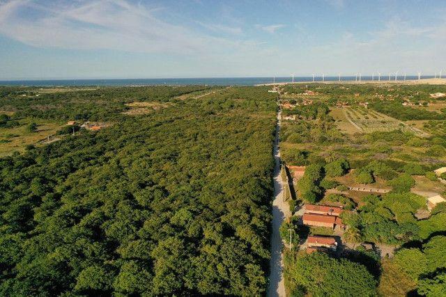 Tenha sua própria Fazenda em Fortim de 12.000 m2, com água e luz. Escritura e Registro - Foto 7