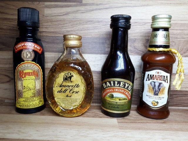 Mini Garrafinhas Colecionáveis Licor (Lote) - Foto 5