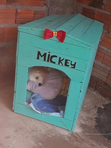 Encomenda de casinhas de cachorro