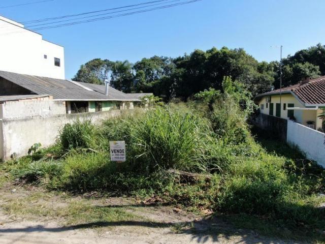 Terreno à venda, 307 m² por r$ 109.500,00 - santa terezinha - itapoá/sc - Foto 2