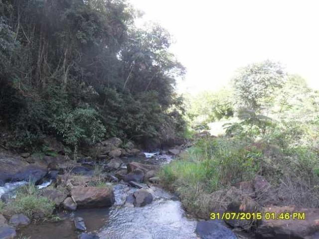 1683/Terreno de 3,19 ha com linda cachoeira e ótima localização - Foto 13