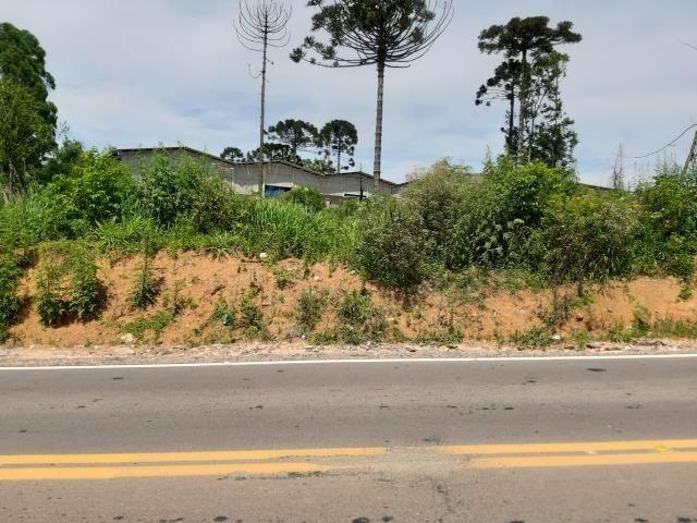 Área Localizada a apenas 120 metros da Rodovia do Xisto/Araucária - Foto 7