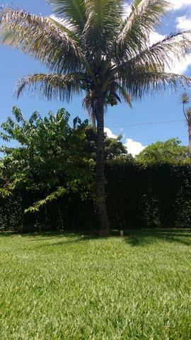 Vendo Linda Chácara Na Entrada Da Cidade-Planaltina Goiás - Foto 13