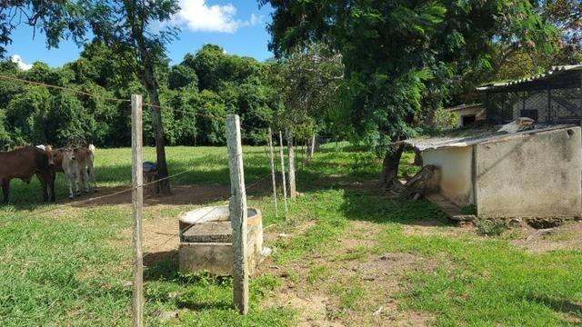 JP 013 -Ótima fazenda colado no Gama,excelente localização - Foto 10