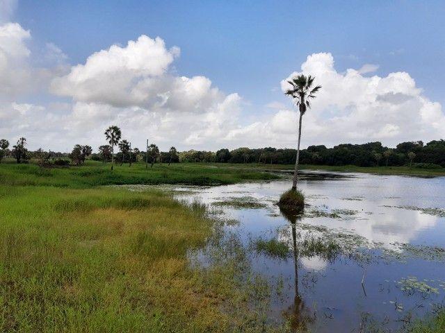 Para investir ou morar Reserva Camará<< - Foto 7