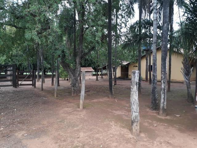 Fazenda com 160 aqls em Formoso do Araguaia - TO c/ confinamento e ótima infra!! - Foto 18