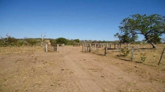 Fazenda no Alto Garças - Foto 3