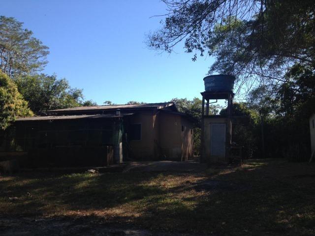 Pesqueiro região de Santo Antonio Do leverger - Foto 12