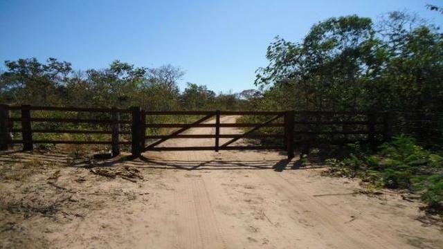 Fazenda no Alto Garças - Foto 4