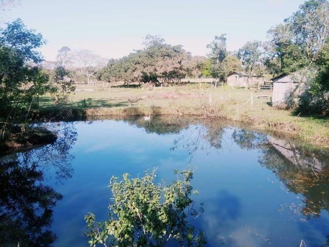 Velleda oferece belo sítio em Águas Claras, próximo a ETA - Foto 6