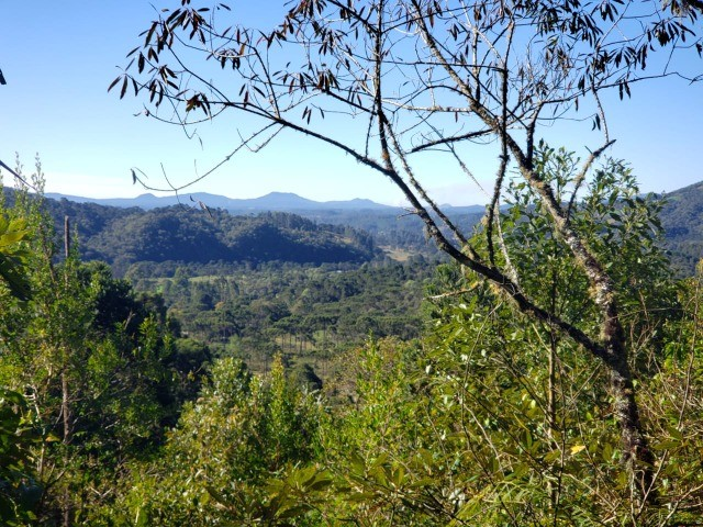 Sítio à venda em Bocaina do Sul - Foto 4