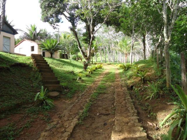 Fazenda Ilhéus Bahia/ Sul da Bahia - Foto 6