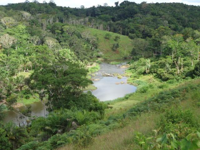 Fazenda Ilhéus Bahia/ Sul da Bahia - Foto 17