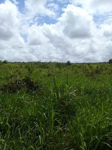 Terra Agricola
