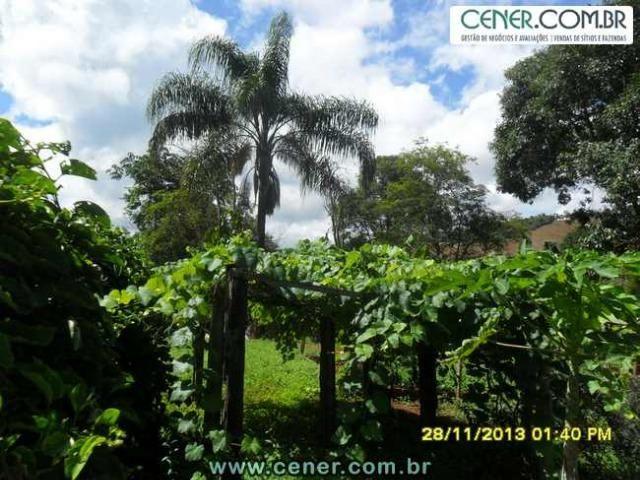 1426/Bela fazenda de 35 ha pertinho de Ouro Branco e com ótima estrutura e belo lago - Foto 6