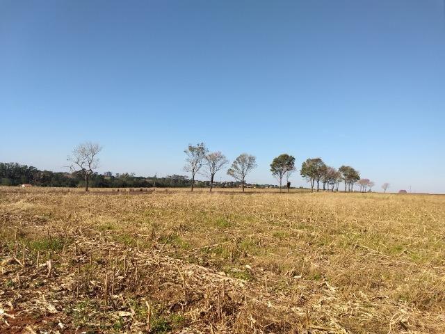Chácara 28400 m2 próxima da cidade de Entre Rios do Oeste PR Troco por casa ou sobrado - Foto 2