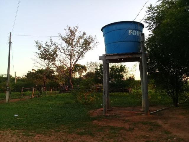Fazenda Paudarco no Piauí - Foto 3