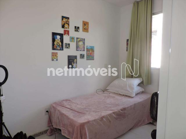 Loja comercial à venda com 3 dormitórios em Castelo, Belo horizonte cod:846349 - Foto 10
